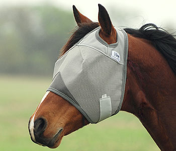 Fly Mask for Drafts