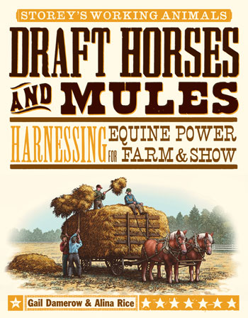 Draft Horse and Mules