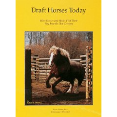 Draft Horses Today 032A