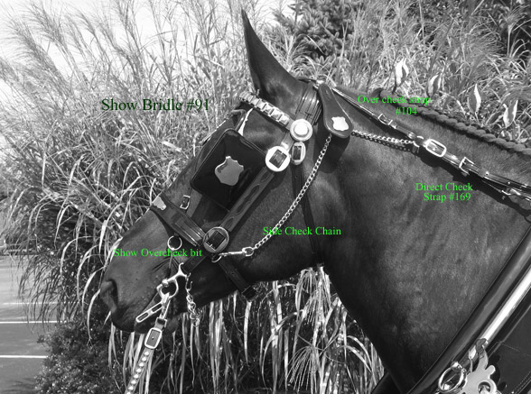 Direct check / Bridle parts