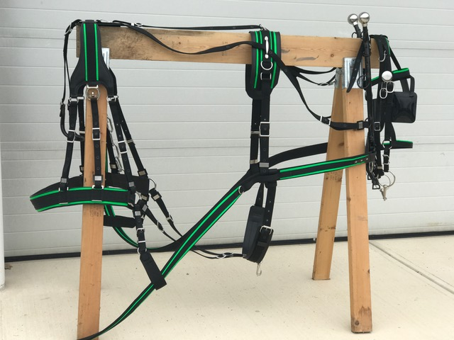 Nylon 3 Strap Harness
