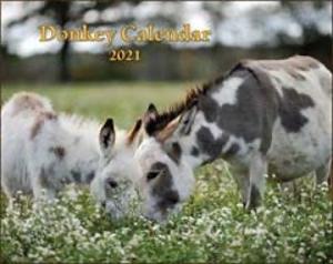 2021 Donkey Calendar